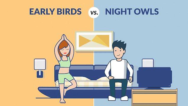 Earlybird Nightowl 6